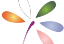 LCDD Logo