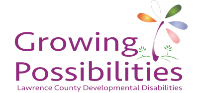 Lawrence County DD's Logo of a multicolored plant